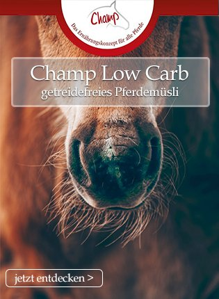 Champ Low Carb