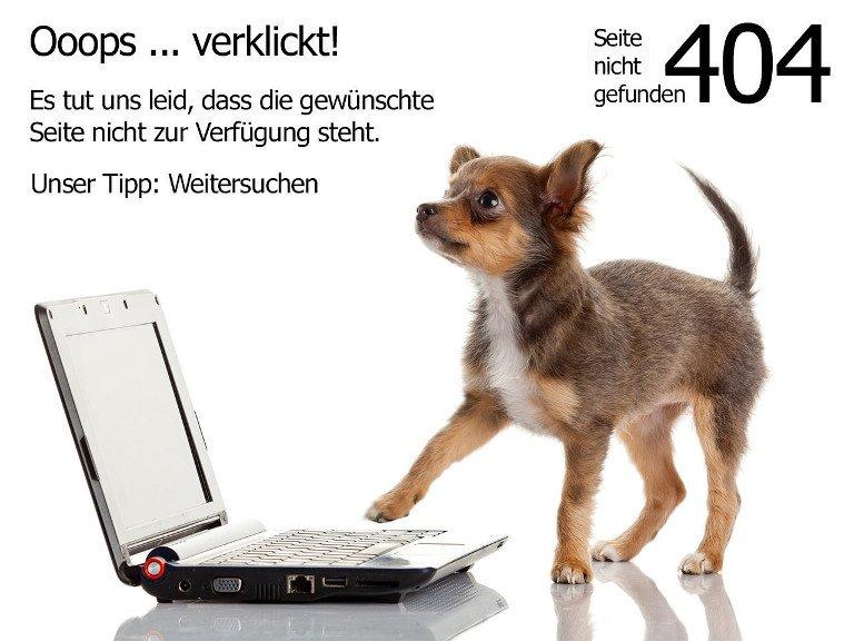 media/image/404_Hund_1280x960_klein595e3481a30e6.jpg