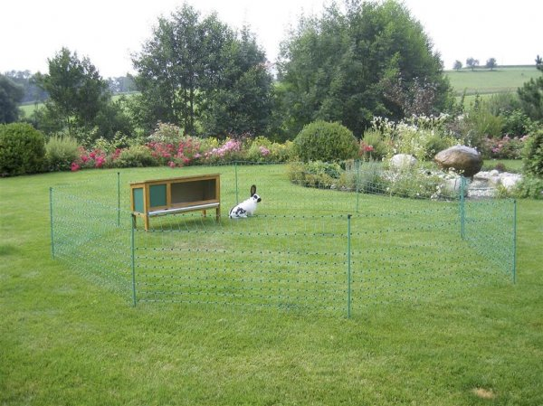 Kerbl Kaninchennetz, grün, 65 cm, 12 m