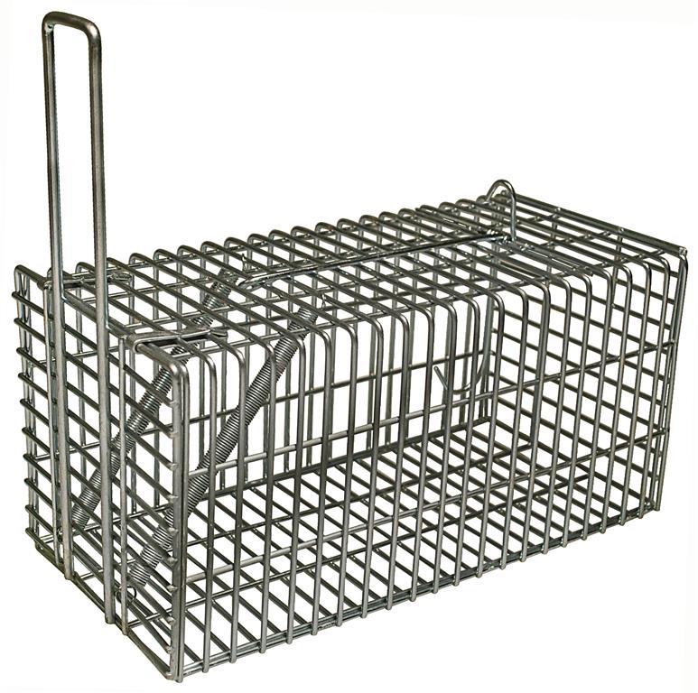 ryom rattenfalle mit griff 31 cm m use rattenfallen. Black Bedroom Furniture Sets. Home Design Ideas