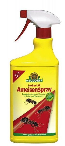 Neudorff Loxiran AF Ameisenspray, 750 ml