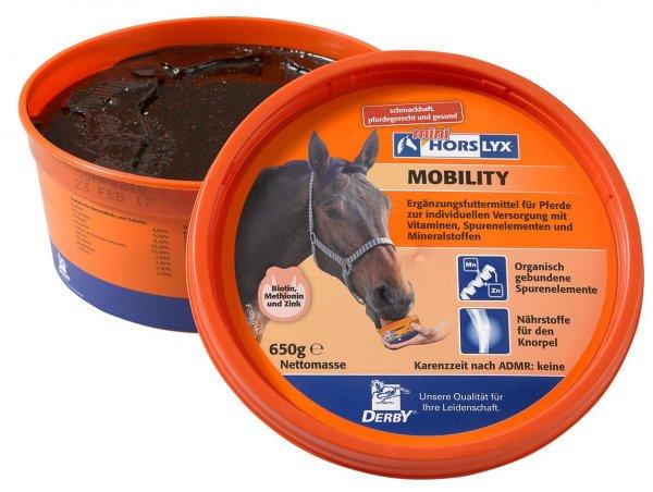 Derby® Horslyx Mobility Leckstein für Pferde, 650 g